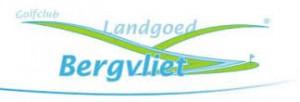 bergvliet logo