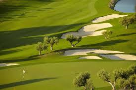 daurada golf